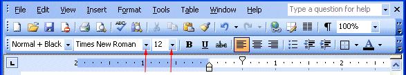 word2003-fontandsize
