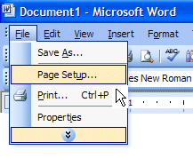 word-2003-pagesetup-1