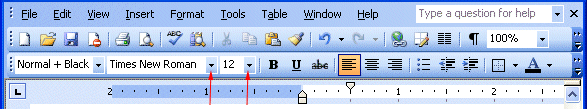 mla format on microsoft word 2003